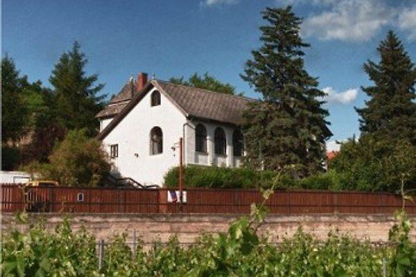 Weingut DOMAINE EDEGGER en Badacsony - imágen 1
