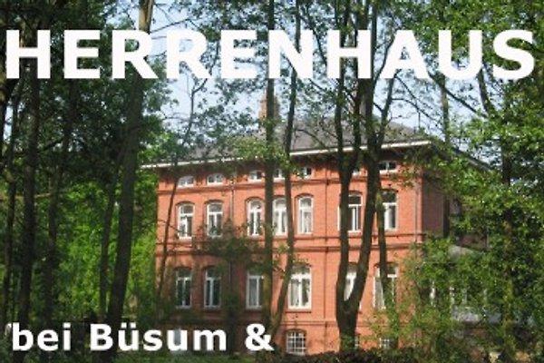Herrenhaus zwischen Büsum und St.Peter-Ording