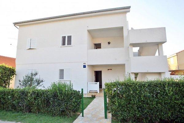 Appartement ASJA-Sabunike, Privlaka à Privlaka - Image 1