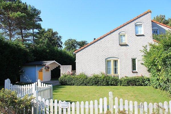 Zeelandhaus avec des dates conservatoires à Brouwershaven - Image 1