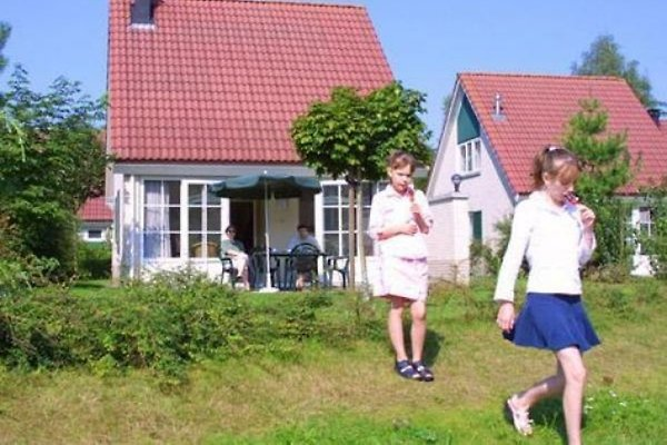 OH002 - Ferienhaus im Hellendoorn in Hellendoorn - Bild 1