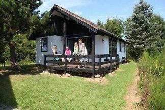 DKS001 - Ferienhaus im Dahlem