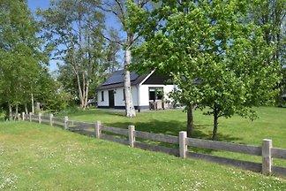 Maison de vacances à Giethoorn