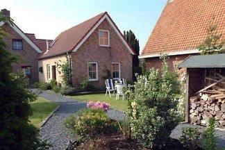 ZE021 - Ferienhaus im Groede