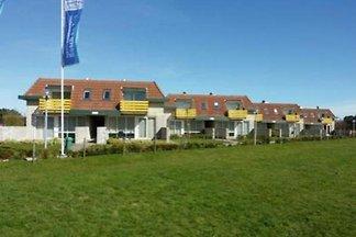 BZ002 - Ferienhaus im Texel-De-Koog