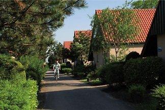 ZE430 - Ferienhaus im Renesse