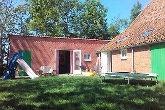 ZE056 - Ferienhaus im Grijpskerke