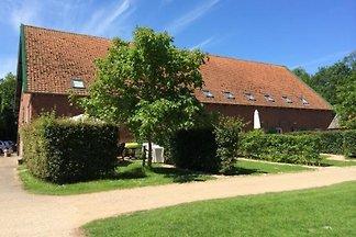 ZE136 - Ferienhaus im Grijpskerke