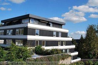 DS231 - Ferienhaus im Winterberg