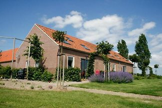 ZE526 - Holiday home in Kattendijke