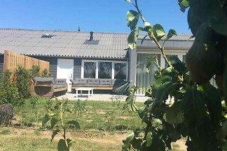 ZE712 - Ferienhaus im Zuidzande