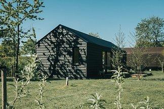 ZH305 - Ferienhaus im Ouddorp