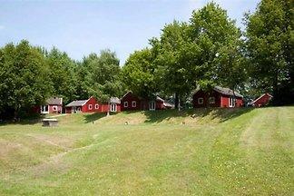 DH003 - Ferienhaus im Gasselternijveen