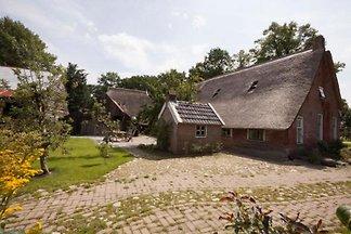DG459 - Ferienhaus im Norg