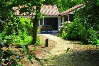 DG446 - Ferienhaus im Ermelo