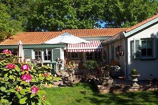 ZH146 - Ferienhaus im Ouddorp