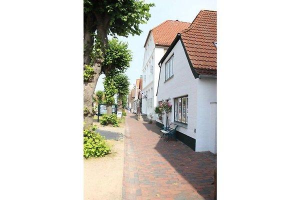 Haus Wittmaack in Arnis