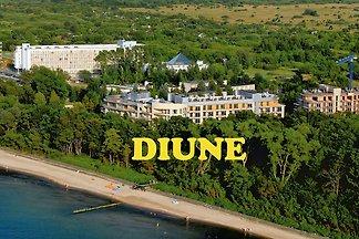 appartamento D51A DIUNE sulla duna