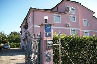 Appartements à Porec Istrie