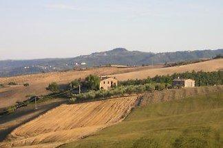 Bardanella