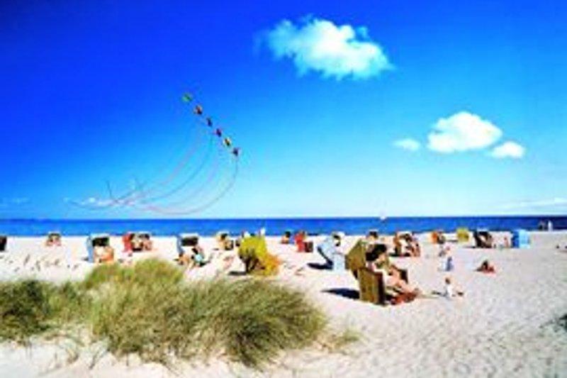 Ostsee auf Augenhöhe ...