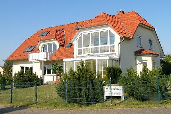 Fernblick in Neu Schloen - immagine 1