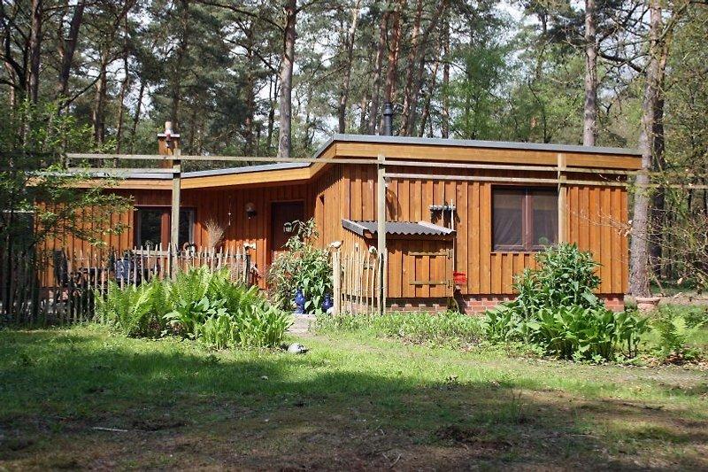 Ferienhaus Casa Carlus