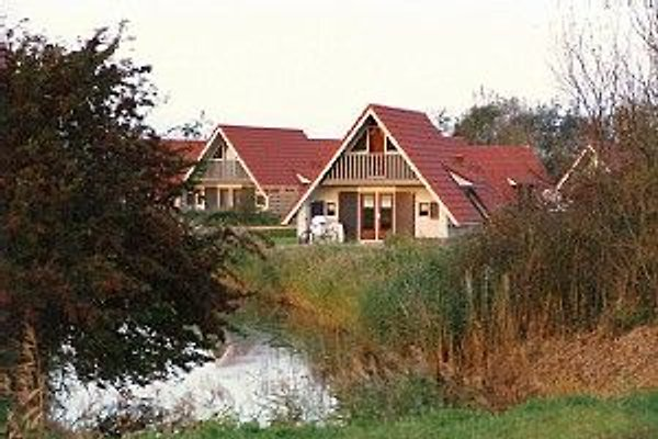 FR001A Bungalow Lauwersmeer in Oostmahorn - immagine 1