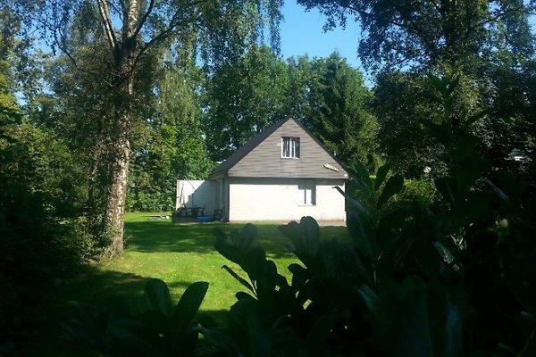 FR011A Bungalow Noordwolde in Noordwolde - immagine 1