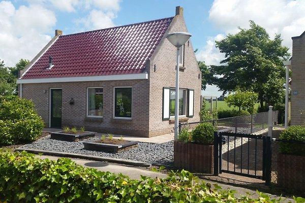 FR171  Ferien Wattenmeer, Friesland in Tzummarum - Bild 1