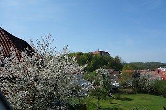 Terrassenwohnung im Harzer Landhaus