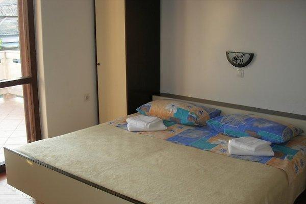 Apartments Kordic *** in Barbat - Bild 1