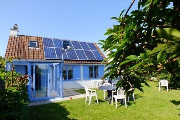 Fischerhaus 51 in Duinendaele à De Panne - Image 1
