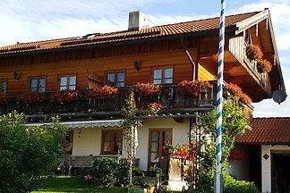 Ferienhaus  Alt / Wohnung Edelweiß