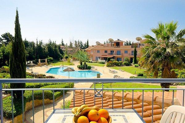 Limnaria Ferienwohnungen in Paphos - immagine 1