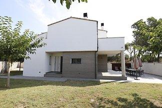 House Olivo 3