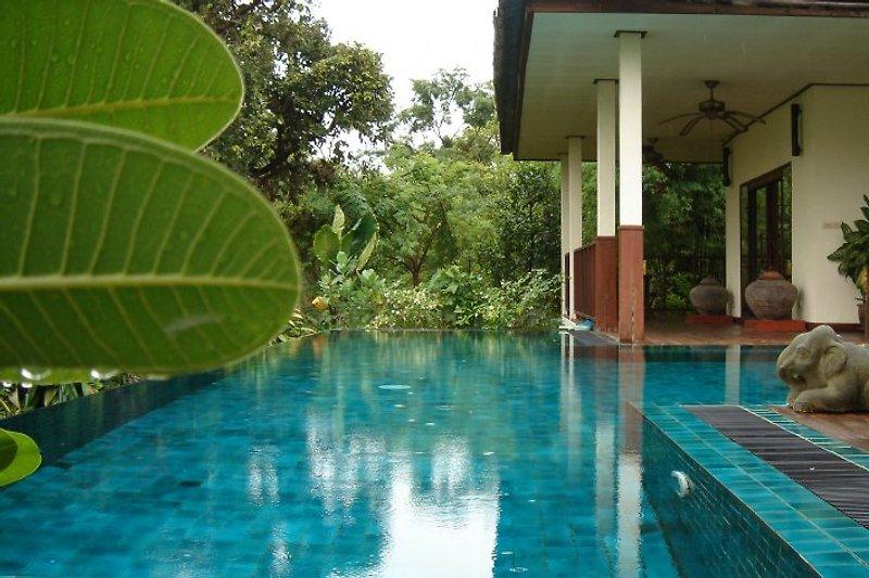 Gecko Villa mit privater Pool