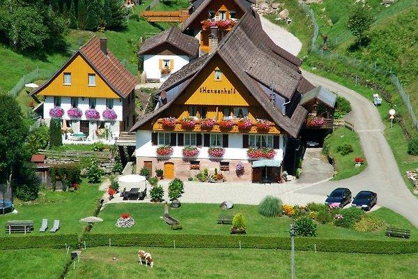 Hansenhof Woh.3