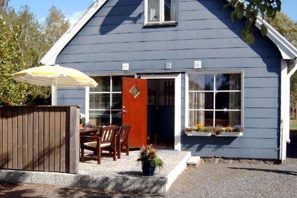 Blĺa huset in Blekinge en Ronneby - imágen 1