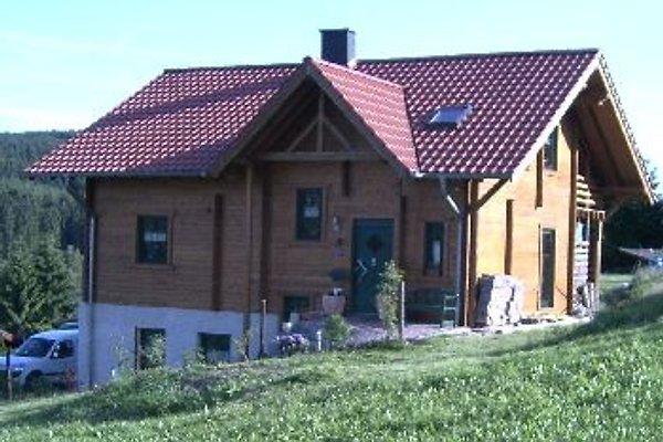 Ferienwohnung Koeppe in Kopp - immagine 1