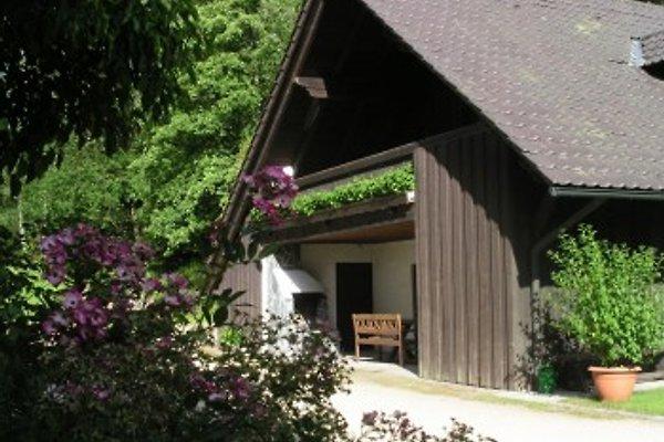 Ferienhaus Untermurnthal  in Neunburg - Bild 1