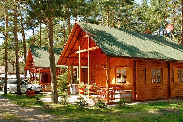 Resort NATURANA en Dzwirzyno - imágen 1