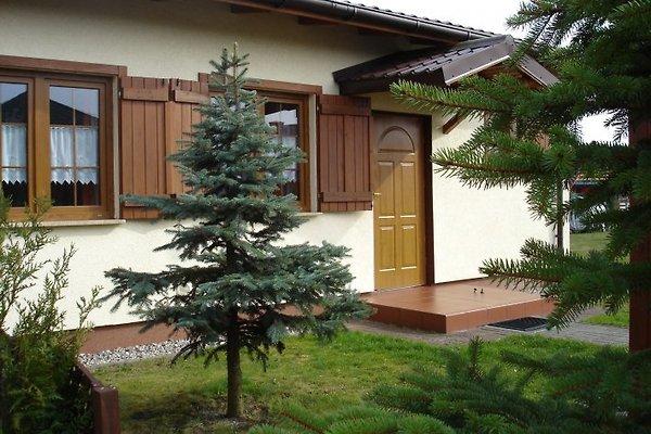 Doppelhaus Typ-M-1 + M-2
