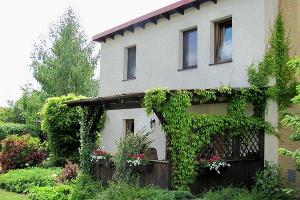 Ferienhaus am Oberuckersee à Oberuckersee - Image 1
