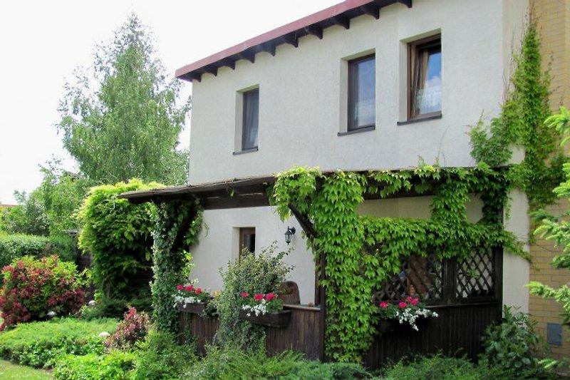 Das Haus mit überdachter und begrünter Terrasse