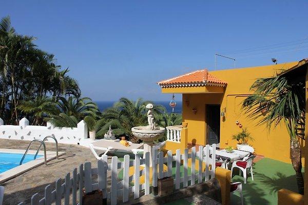 Finca Brisas del Mar à La Guancha - Image 1