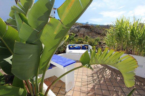 Casa tata pool tenerife east casa vacanze in tejina - Canarie a dicembre si fa il bagno ...