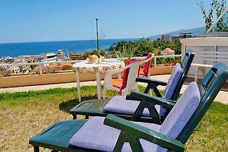 Ferienwohnung Loro in Puerto Cruz
