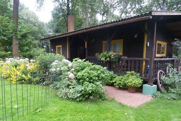 Das Eulenhaus Gohlau 20A in Gohlau - Bild 1