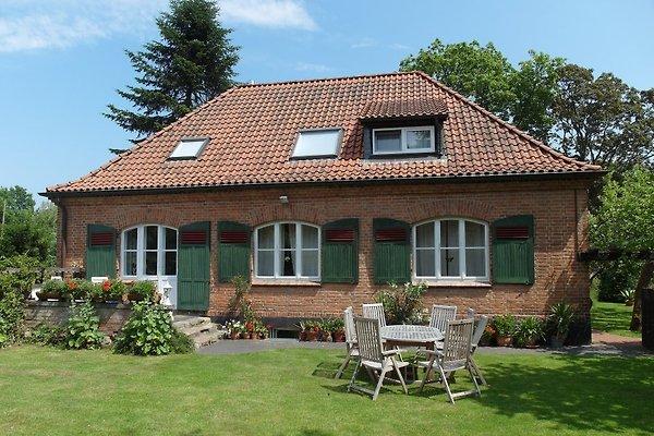 Landhaus Seelust à Plau am See - Image 1